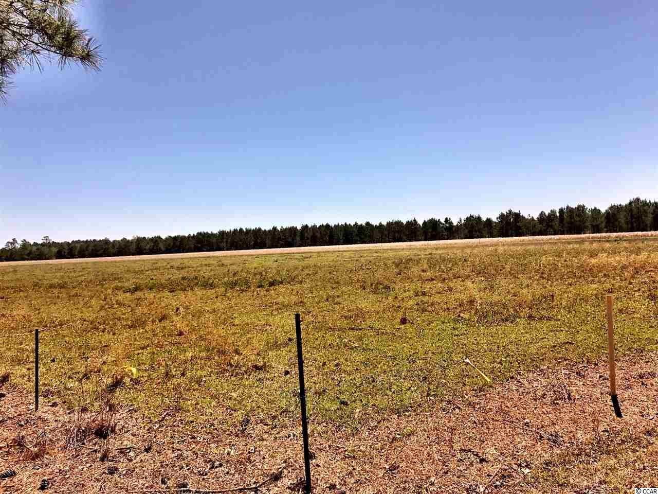 Acreage for Sale at 6490 Pauley Swamp Road 6490 Pauley Swamp Road Conway, South Carolina 29527 United States