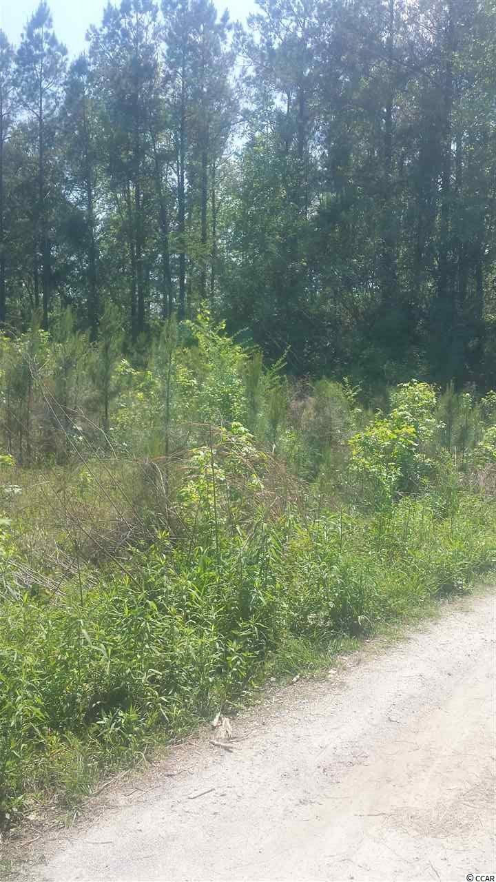 Additional photo for property listing at 110 Bill W. Way 110 Bill W. Way Longs, South Carolina 29568 United States