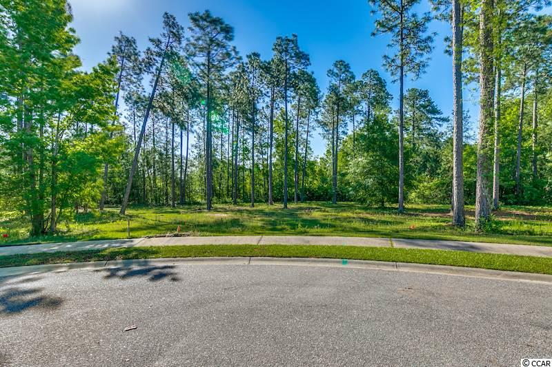 1001 Wigeon Drive, Conway, SC 29526