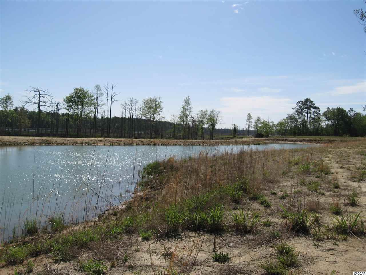 Additional photo for property listing at 46.7 Acres Woodland Avenue 46.7 Acres Woodland Avenue Georgetown, South Carolina 29440 United States