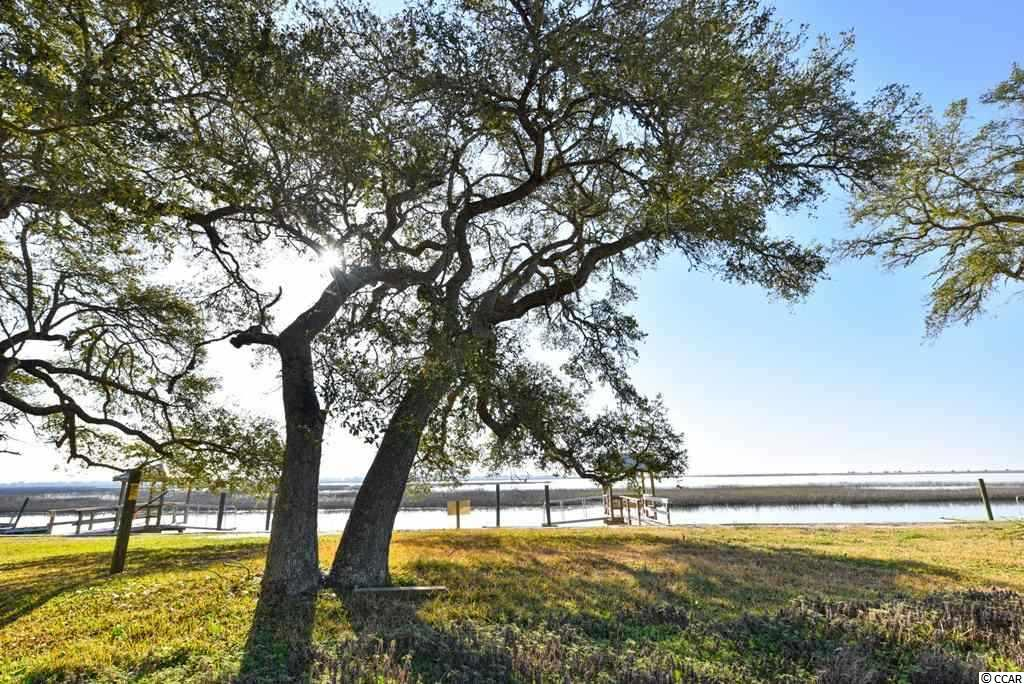 Lot 1 Business Hwy 17, Murrells Inlet, SC 29576