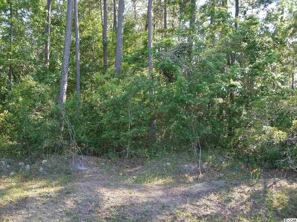 Additional photo for property listing at Lot 0 Brace Drive Lot 0 Brace Drive Pawleys Island, South Carolina 29585 United States