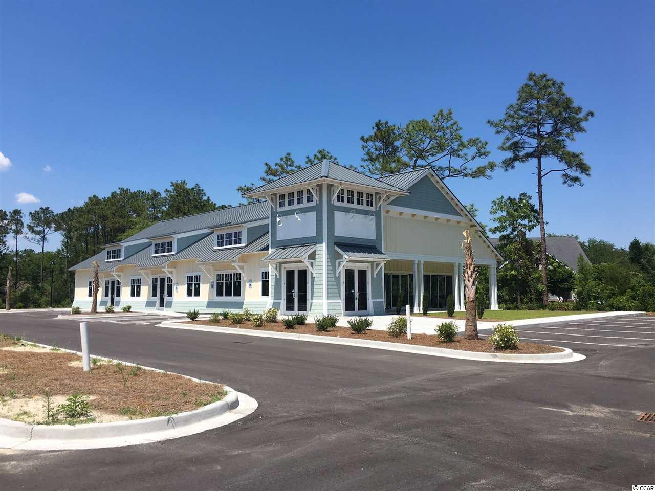 8415 Ocean Highway, Pawleys Island, SC 29585