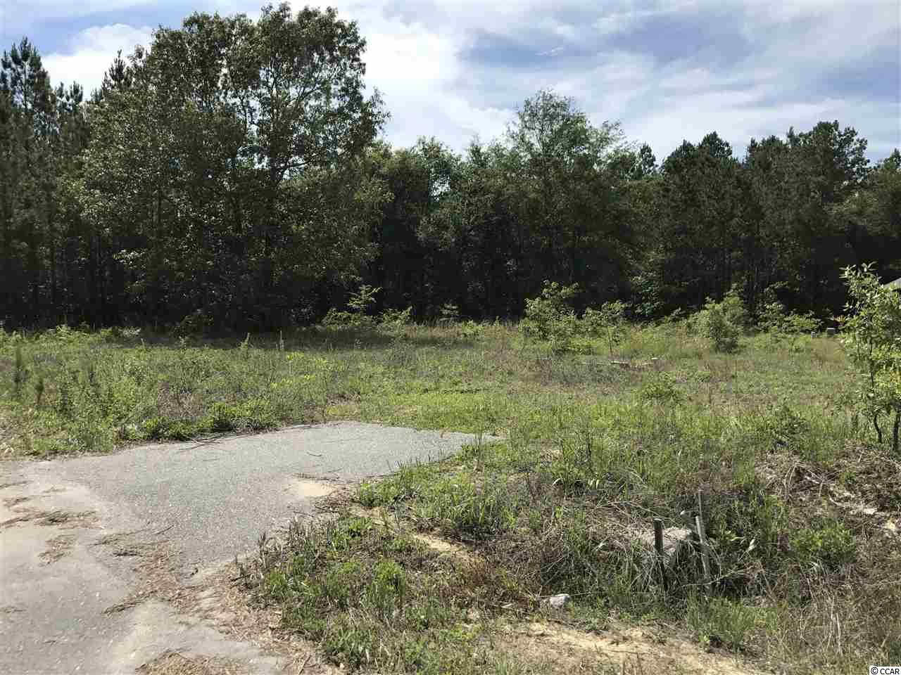 Land for Sale at TBD Old Charleston Road TBD Old Charleston Road Georgetown, South Carolina 29440 United States