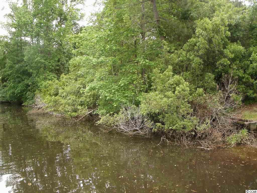 Lot 3 Waverly Road, Pawleys Island, SC 29585