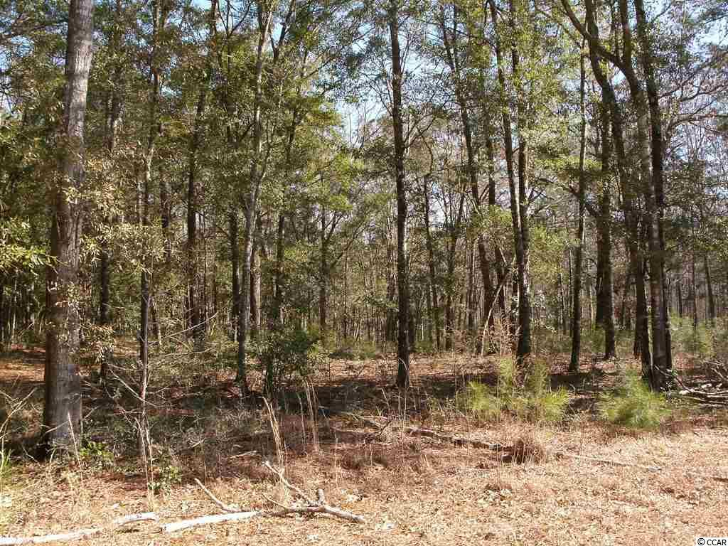 Lot 7 Shadow Moss Lane, Murrells Inlet, SC 29576