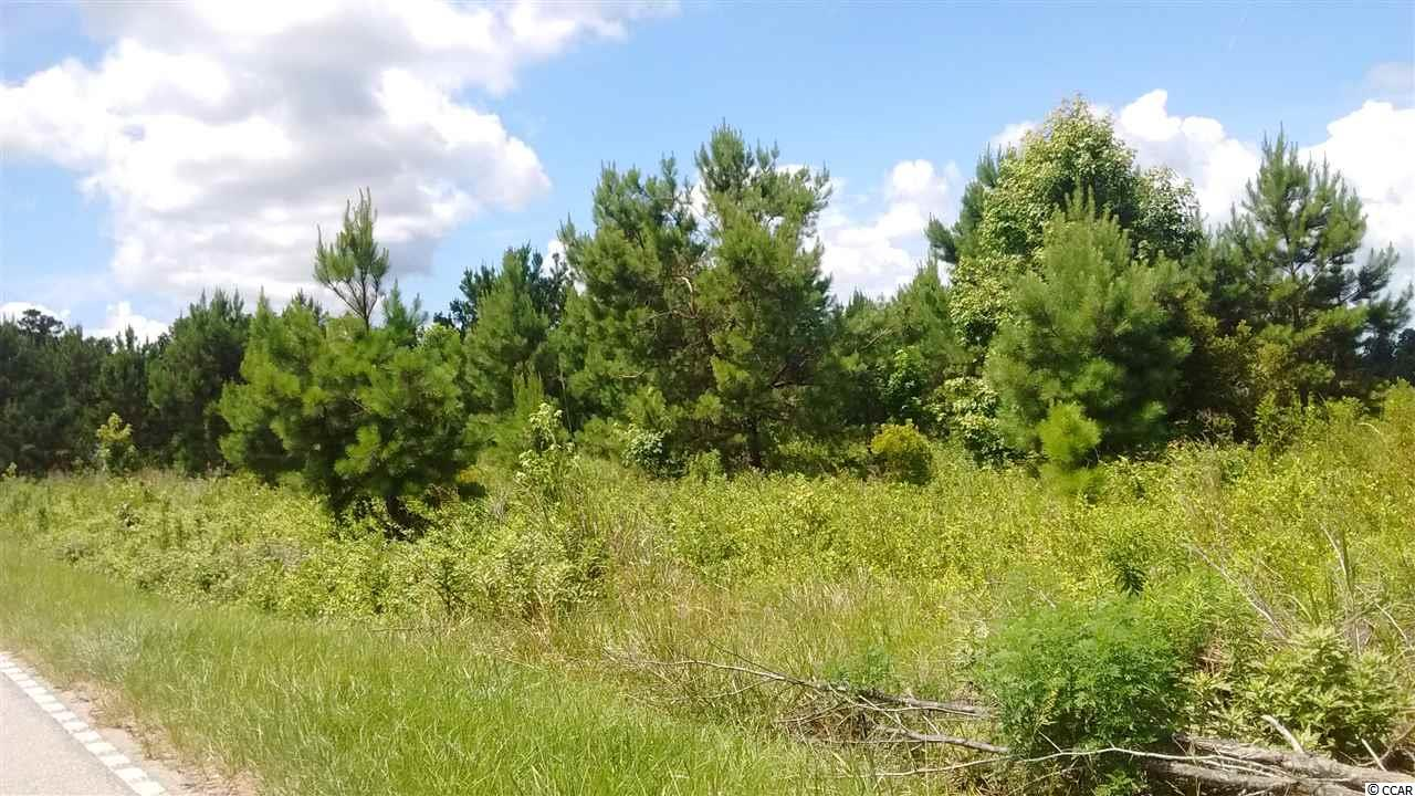 Acreage for Sale at TBD Old Pee Dee Road TBD Old Pee Dee Road Georgetown, South Carolina 29440 United States