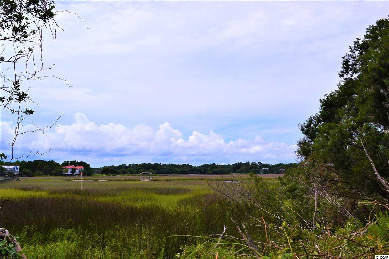 Pawleys Island Birds Nest