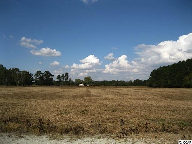Land for Sale at 4.09 Acres Carolina Road 4.09 Acres Carolina Road Green Sea, South Carolina 29545 United States