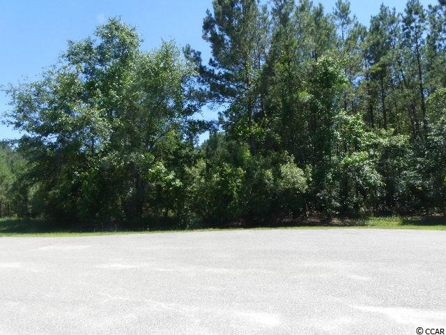 Land for Sale at 795 Redmond Court 795 Redmond Court Conway, South Carolina 29526 United States