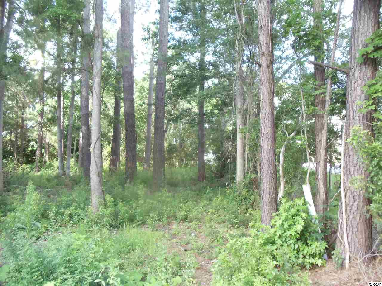 Additional photo for property listing at 161 Olde Canal Loop 161 Olde Canal Loop Pawleys Island, South Carolina 29585 United States
