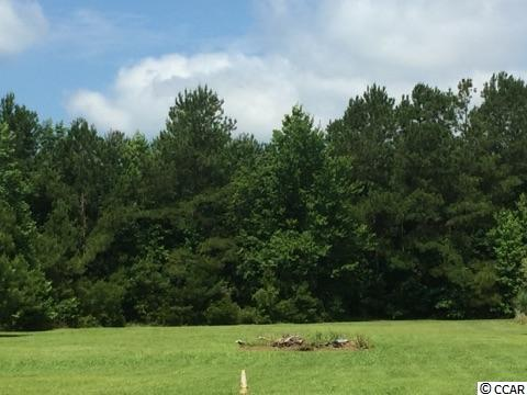 Acreage for Sale at TBD Hwy 701 TBD Hwy 701 Conway, South Carolina 29527 United States
