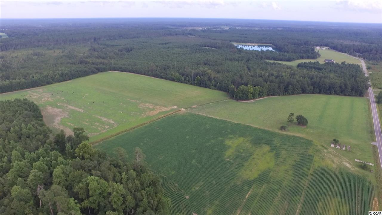 Acreage for Sale at 6075 Hampton Road 6075 Hampton Road Conway, South Carolina 29527 United States