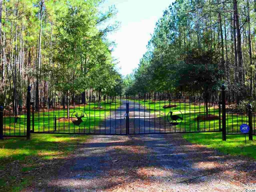 Acreage for Sale at 1148 Trio Road 1148 Trio Road Andrews, South Carolina 29510 United States