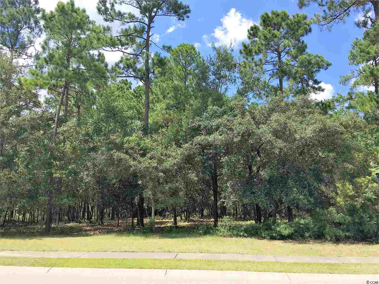 Lot 133 Oxbow Drive, Myrtle Beach, SC 29579