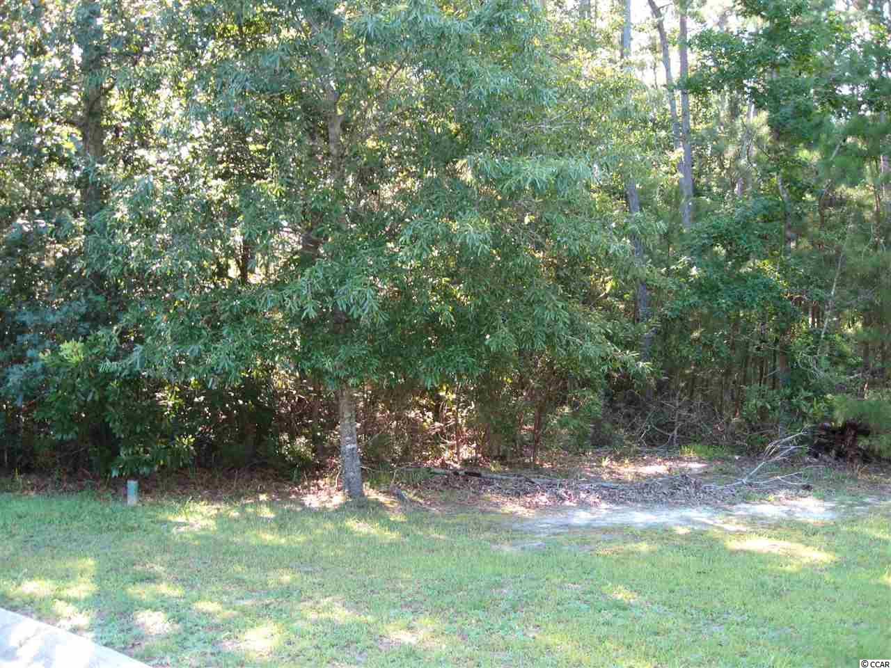 Land for Sale at 218 Wood Cut Court 218 Wood Cut Court Murrells Inlet, South Carolina 29576 United States