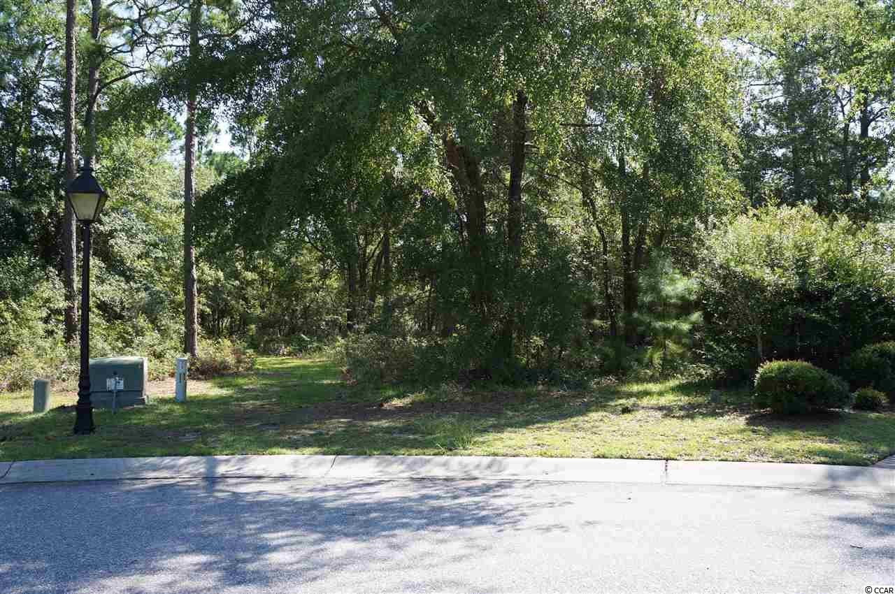 Additional photo for property listing at Lot 35 Vintage Drive Lot 35 Vintage Drive Pawleys Island, South Carolina 29585 United States