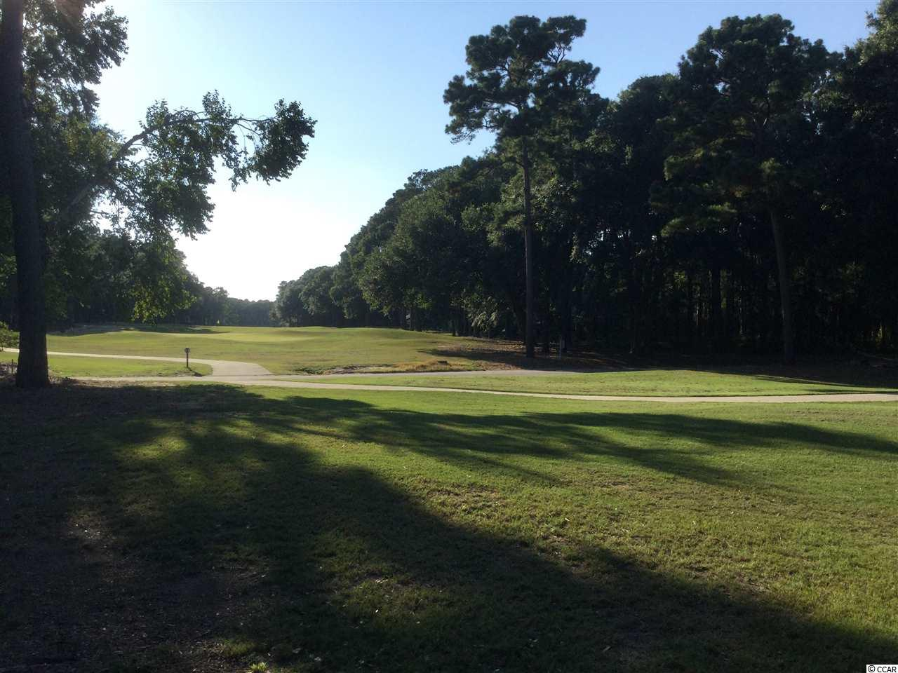 Have you seen this  Masters Place property for sale in Pawleys Island