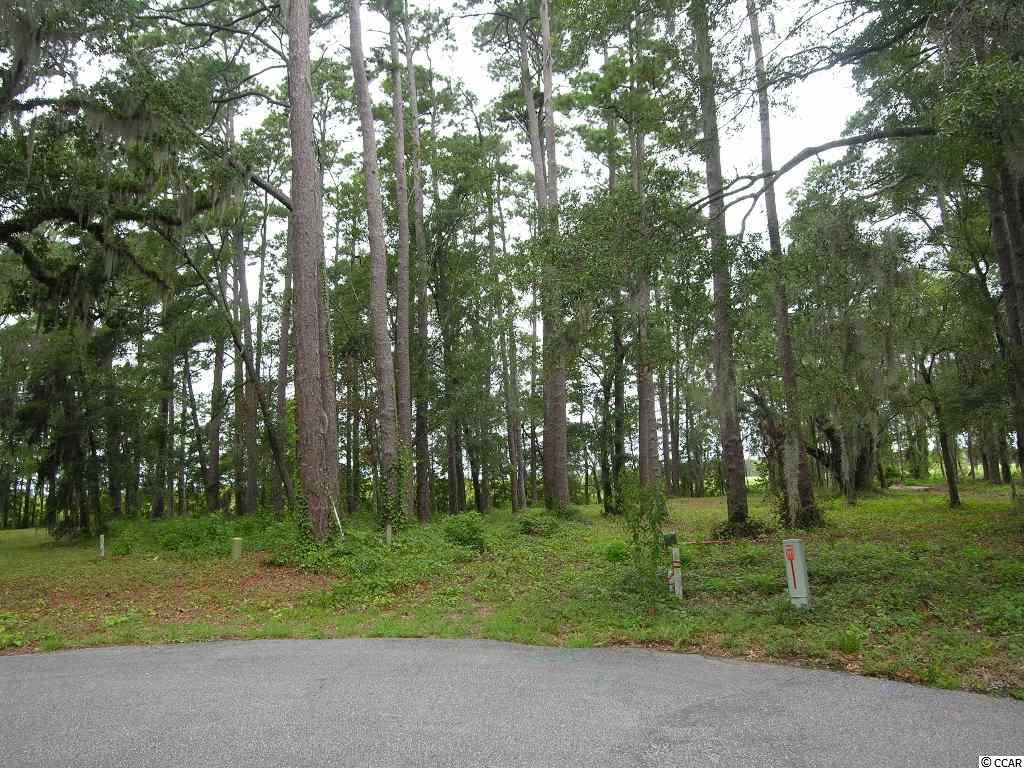 Lot D Cabaniss Lane, Pawleys Island, SC 29585