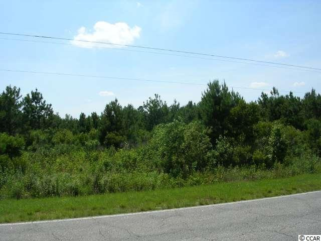 Acreage for Sale at TRACT A HWY 9 TRACT A HWY 9 Nichols, South Carolina 29581 United States