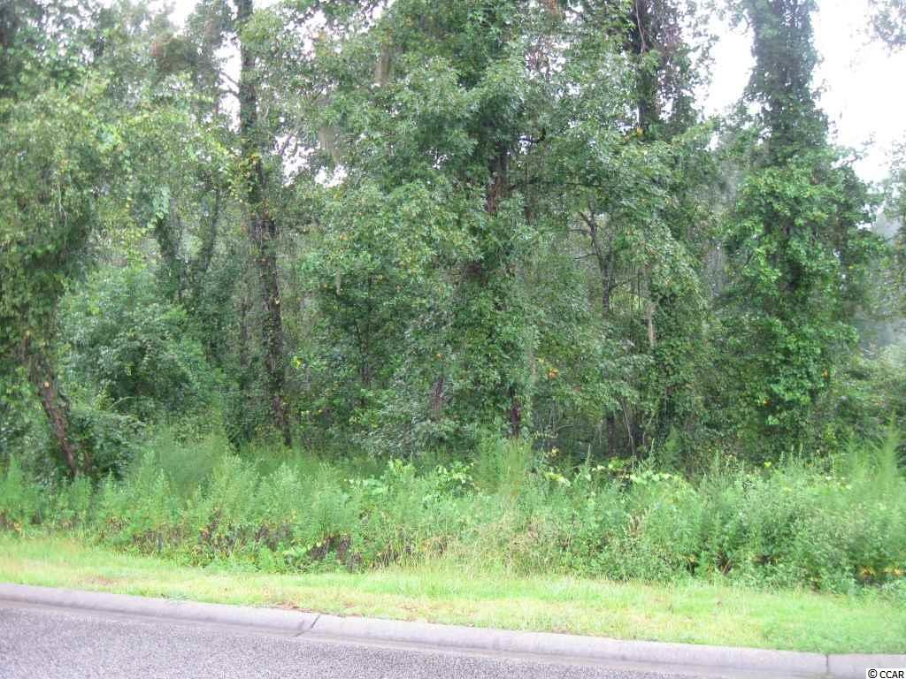 Land for Sale at 286 Rivers Edge Drive 286 Rivers Edge Drive Conway, South Carolina 29526 United States