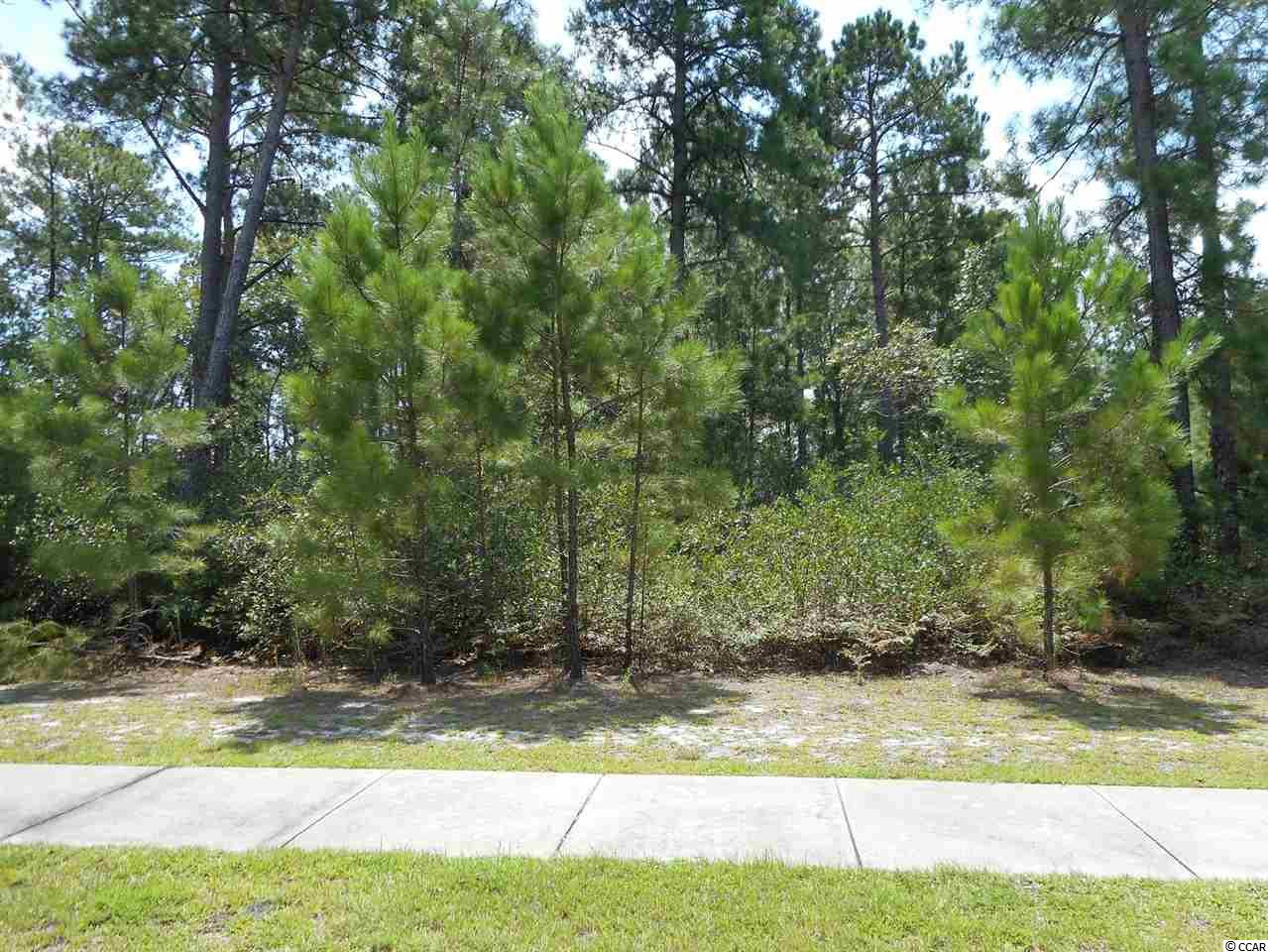 Land for Sale at 1105 Cycad Drive 1105 Cycad Drive Myrtle Beach, South Carolina 29579 United States