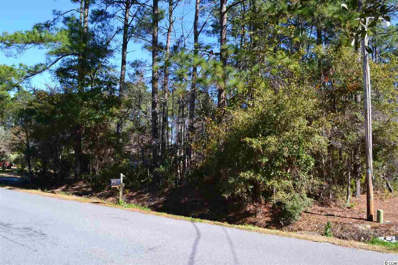 Land for Sale at 458 Old Ashley Loop 458 Old Ashley Loop Pawleys Island, South Carolina 29585 United States