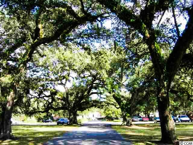 MLS #1717518 at  WEDGEFIELD PLANTATION for sale