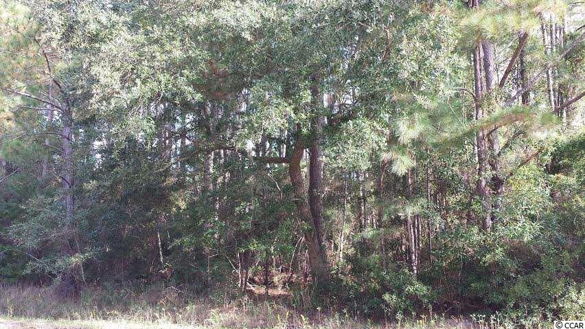 Land for Sale at 4796 St Delight Road 4796 St Delight Road Georgetown, South Carolina 29440 United States