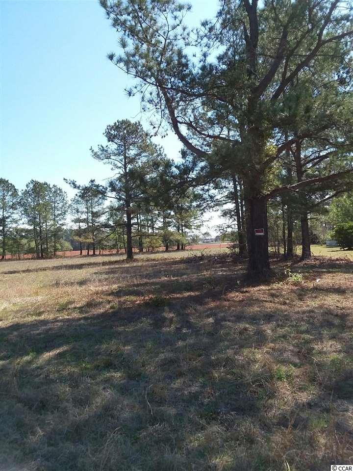 Land for Sale at Lot #2 Hwy 410 Lot #2 Hwy 410 Aynor, South Carolina 29511 United States