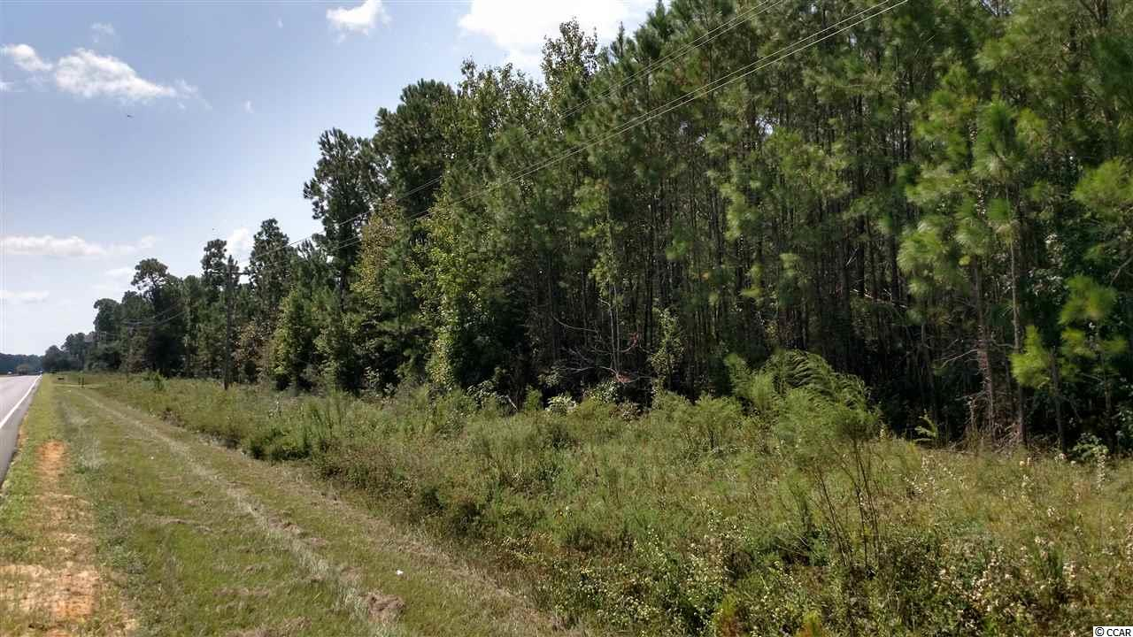 Acreage for Sale at 10364 South Fraser Street 10364 South Fraser Street Georgetown, South Carolina 29440 United States