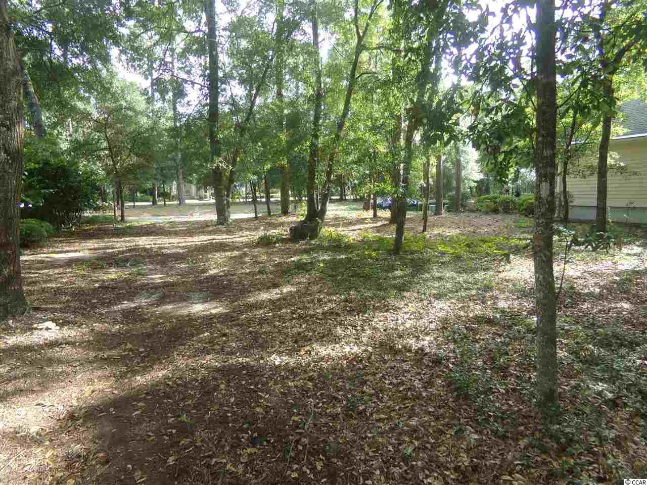 Land for Sale at 4743 Chester Road 4743 Chester Road North Myrtle Beach, South Carolina 29582 United States