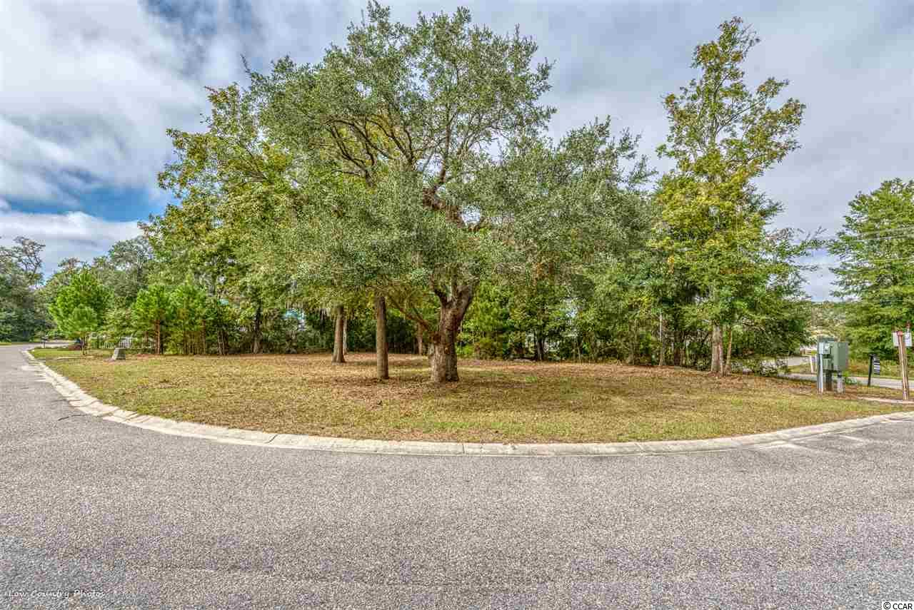 Land for Sale at 32 Seagrass Court 32 Seagrass Court Pawleys Island, South Carolina 29585 United States