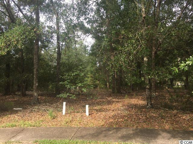 Land for Sale at 28 Madison Drive 28 Madison Drive Georgetown, South Carolina 29440 United States