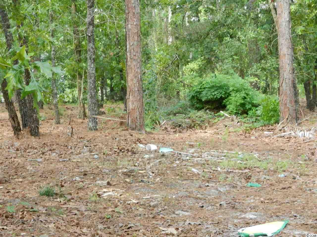 Acreage for Sale at 2429 Highway 544 2429 Highway 544 Conway, South Carolina 29526 United States