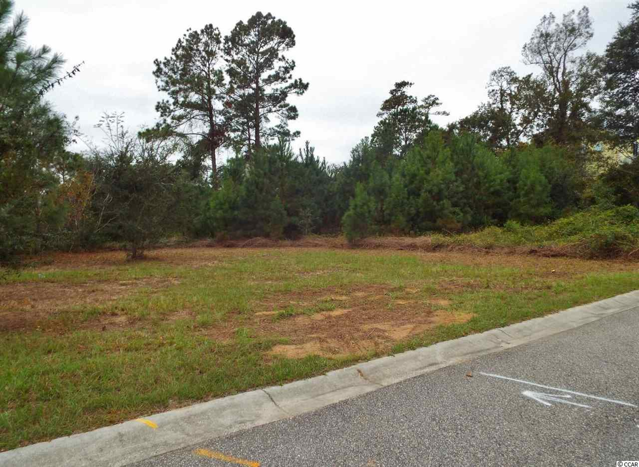 Additional photo for property listing at 57 Seagrass Court 57 Seagrass Court Pawleys Island, South Carolina 29585 United States
