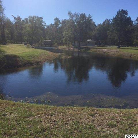 Single Family Home for Sale at 3800 N GUNTERS ISLAND Road 3800 N GUNTERS ISLAND Road Galivants Ferry, South Carolina 29544 United States