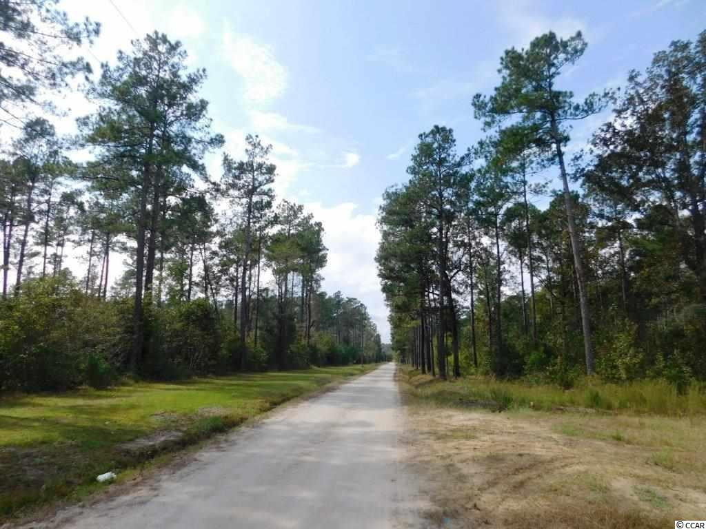 Additional photo for property listing at TBD 250 Acres Old Buck Creek Road TBD 250 Acres Old Buck Creek Road Longs, South Carolina 29568 United States