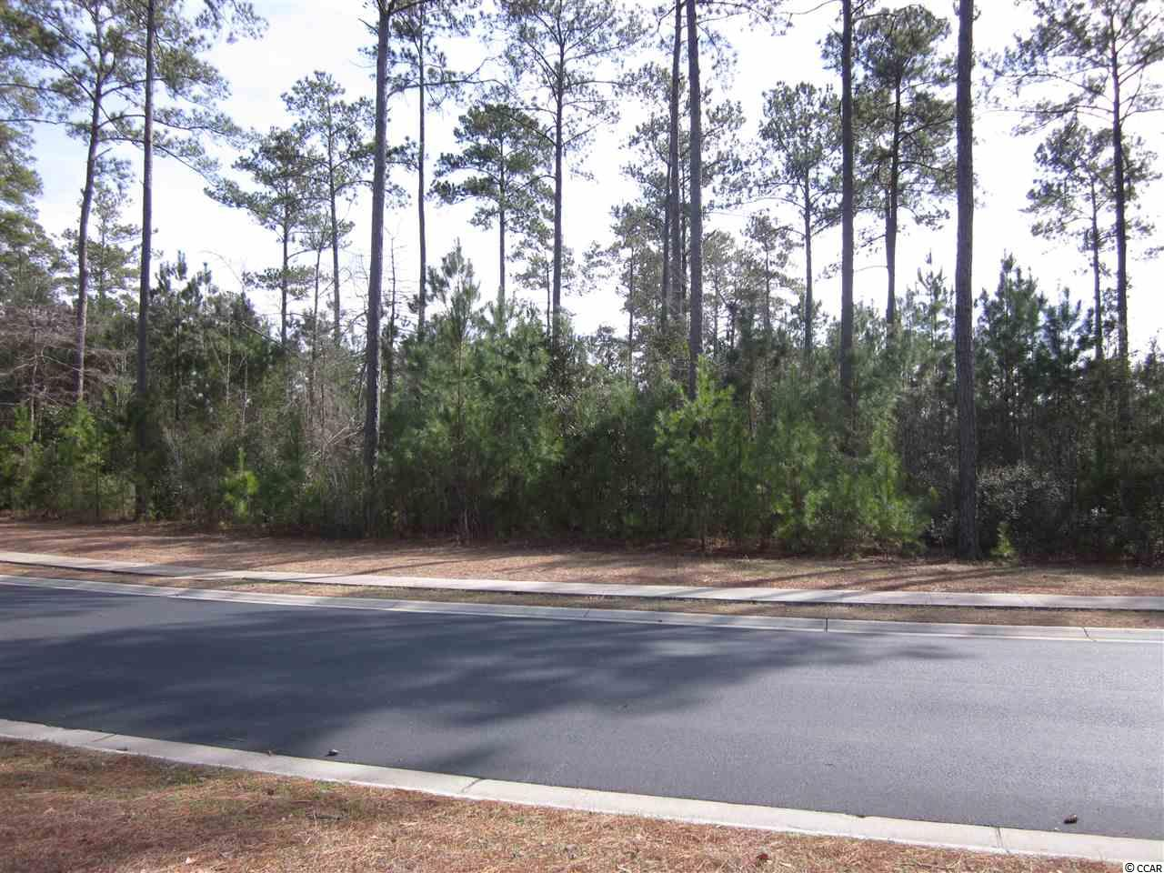 Land for Sale at 540 Waterway Palms Plantation 540 Waterway Palms Plantation Myrtle Beach, South Carolina 29579 United States