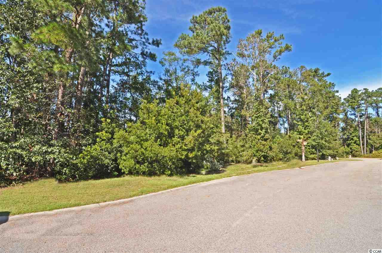 Additional photo for property listing at Lot 6 Lake Pointe Drive Lot 6 Lake Pointe Drive Murrells Inlet, South Carolina 29576 United States