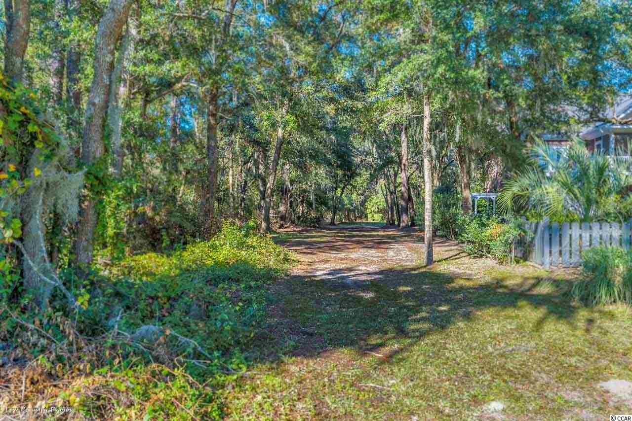 Additional photo for property listing at 469 Congressional Drive 469 Congressional Drive Pawleys Island, South Carolina 29585 United States