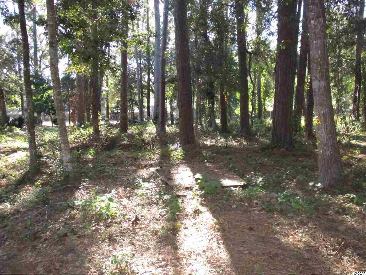 Additional photo for property listing at Lot 9 Masters Drive Lot 9 Masters Drive Pawleys Island, South Carolina 29585 United States