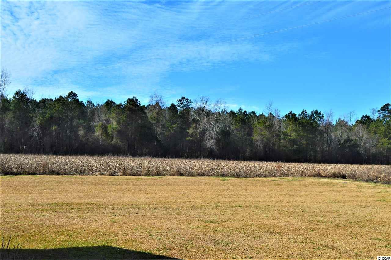 Additional photo for property listing at 3348 Fries Bay Road 3348 Fries Bay Road Loris, South Carolina 29569 United States