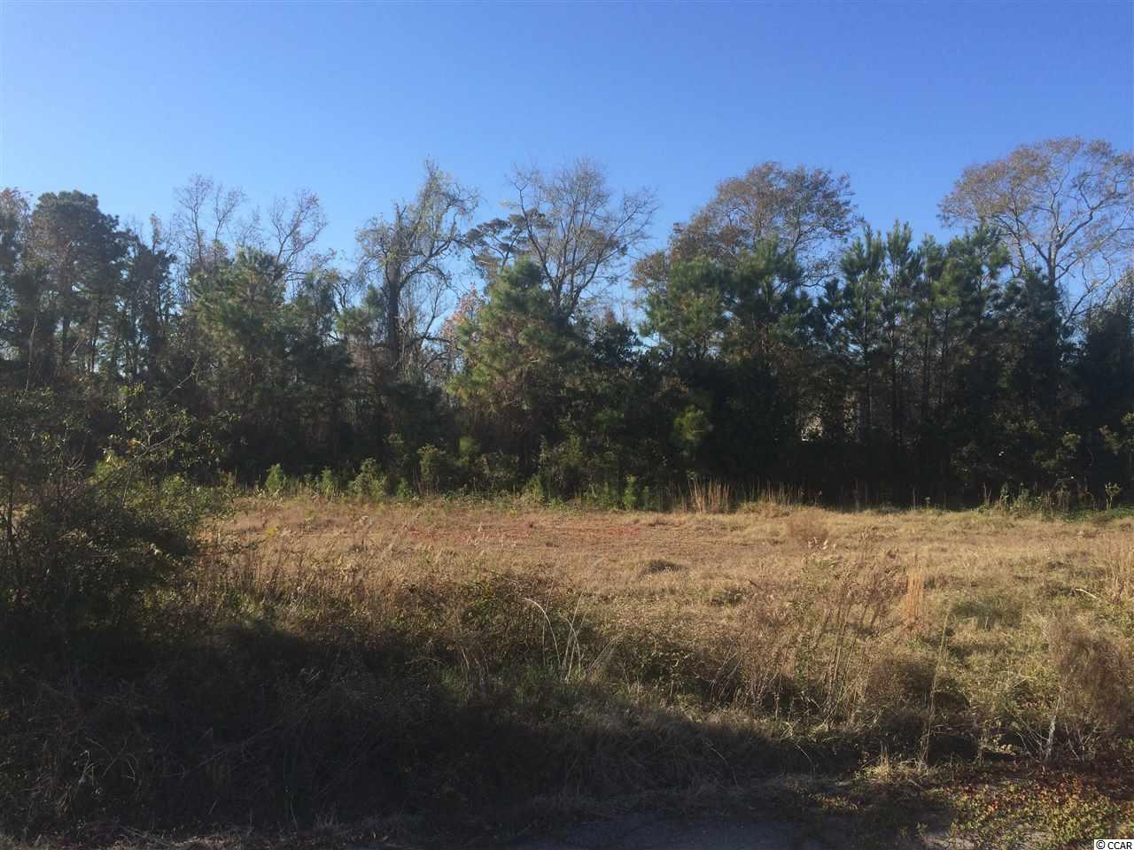 Land for Sale at Lot 6 Ocean Highway Lot 6 Ocean Highway Pawleys Island, South Carolina 29585 United States