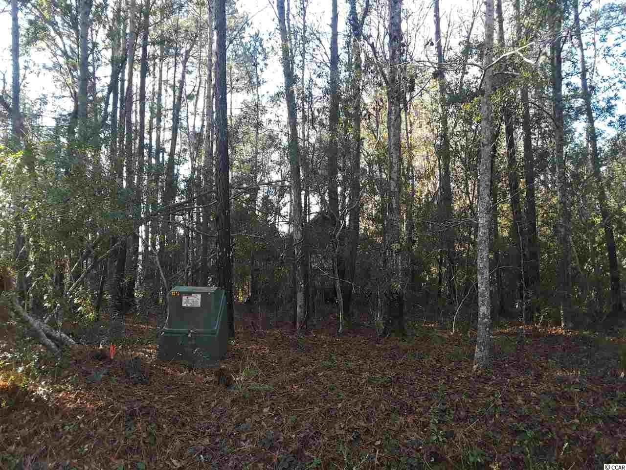 Land for Sale at lot43-A Hwy#814 lot43-A Hwy#814 Myrtle Beach, South Carolina 29588 United States
