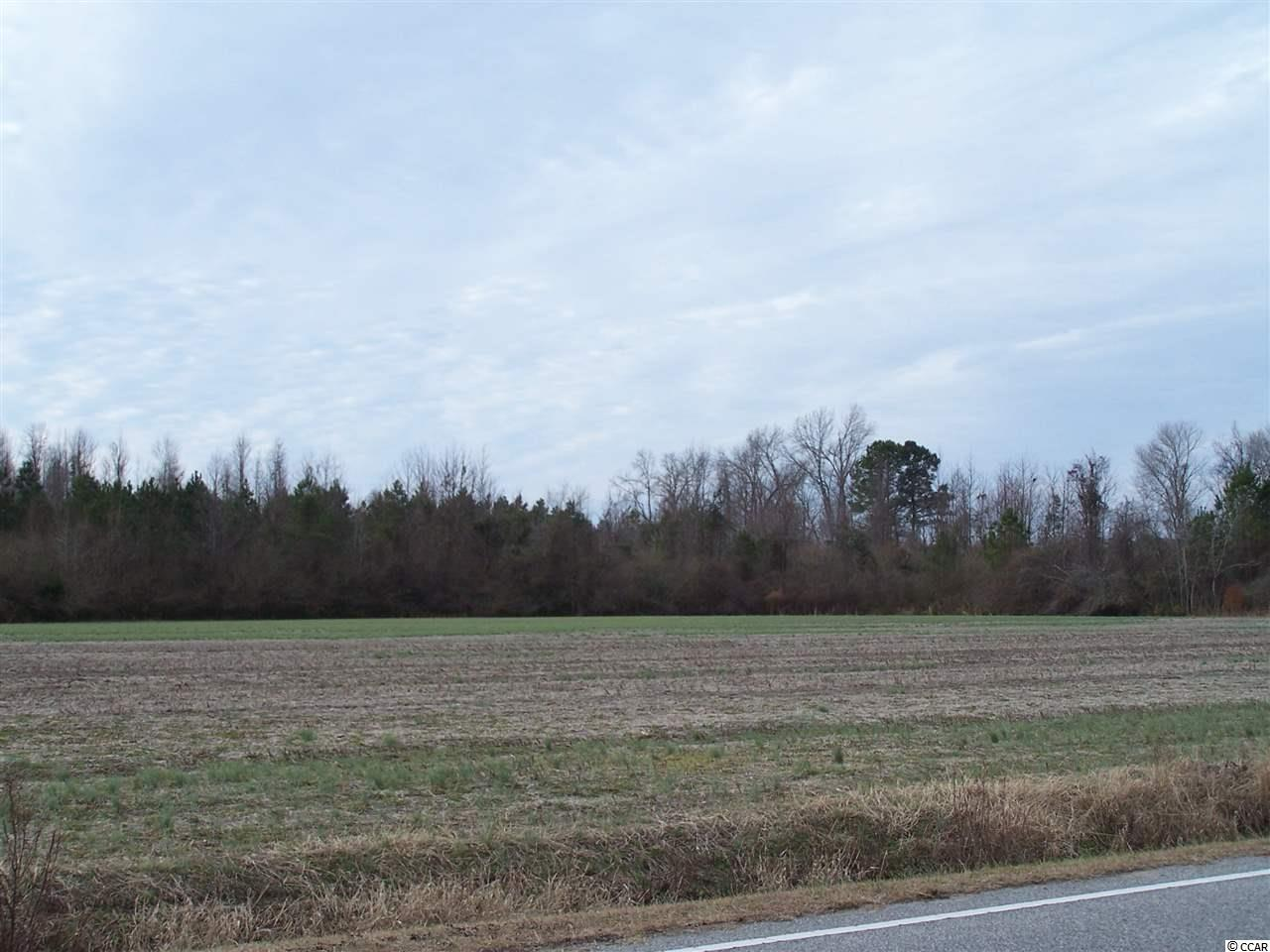 Acreage for Sale at TBD Swamp Fox Highway TBD Swamp Fox Highway Tabor City, North Carolina 28463 United States