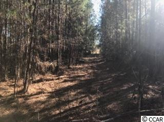 Land for Sale at 2352 Chestnut Road 2352 Chestnut Road Longs, South Carolina 29568 United States