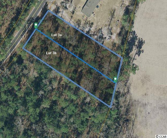 Acreage for Sale at Lot 3a Vaught Road Lot 3a Vaught Road Galivants Ferry, South Carolina 29544 United States