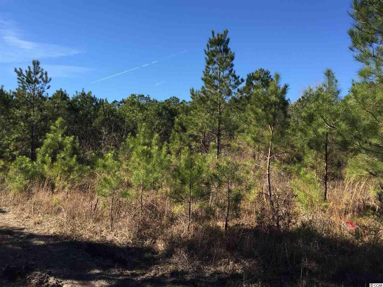Acreage for Sale at TBD Hwy 57 TBD Hwy 57 Longs, South Carolina 29568 United States