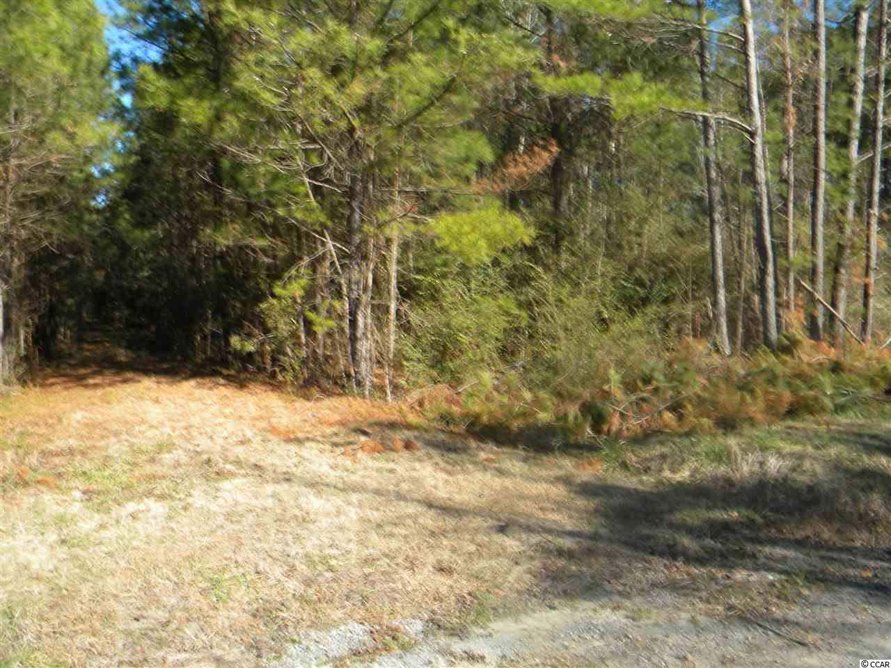 Land for Sale at Lot E Dossies Road Lot E Dossies Road Conway, South Carolina 29526 United States